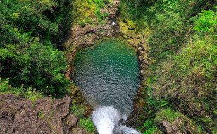 природа, реки, озера, озеро, зелень