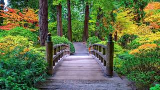 Portland Japanese Garden обои для рабочего стола 1920x1080 portland japanese garden, природа, парк, portland, japanese, garden