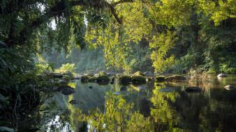 обои для рабочего стола 1920x1080 природа, реки, озера, деревья, река, камни, отражение