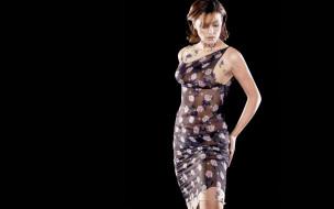 актриса, шатенка, платье