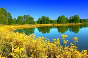 illinois state park, природа, реки, озера, illinois, state, park