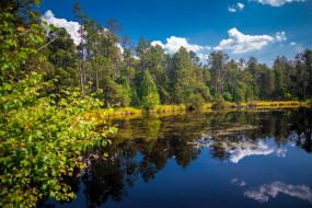 great moss lake in rejviz, czech republic, природа, реки, озера, great, moss, lake, in, rejviz, czech, republic