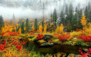 обои для рабочего стола 1920x1200 природа, реки, озера, ручей, осень, туман