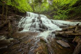 природа, водопады, лес, водопад, пенсильвания, каскад, коряги, pennsylvania, ricketts, glen, state, park, парк, штата, рикетс, глен, mohawk, falls