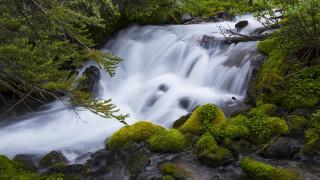 природа, водопады, лес, ветки, камни, водопад, мох, поток, бревно, хвоя