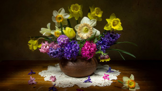 цветы, букеты,  композиции, гиацинты, тюльпаны, нарциссы