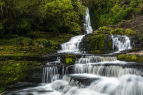 природа, водопады, лес, водопад, мох, новая, зеландия, каскад, new, zealand, tautuku, river, маклин, река, таутуку, mclean, falls