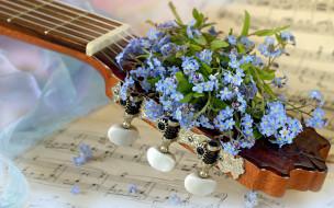 музыка, -музыкальные инструменты, гитара, ноты, незабудки, голубые