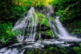 panther creek falls, gifford pinchot national forest, природа, водопады, panther, creek, falls, gifford, pinchot, national, forest