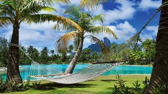 природа, тропики, пальмы, гамак
