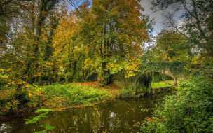 природа, парк, осень, листопад, водоем, мостик