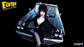 кино фильмы, elvira,  mistress of the dark, эльвира, машина