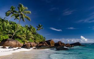 природа, тропики, море, камни, пальмы