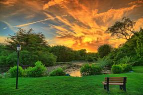 природа, парк, пруд, фонарь, скамейка, закат