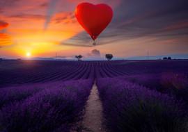авиация, воздушные шары дирижабли, закат, лаванда