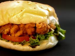 еда, бутерброды,  гамбургеры,  канапе, гамбургер