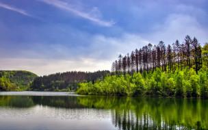 природа, реки, озера, лето, река, лес, отражение