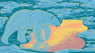 белый медведь, льдины