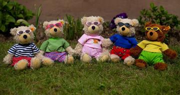 разное, игрушки, трава, плюшевые, медведи, очки