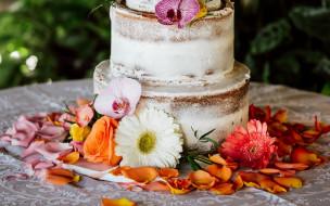 еда, торты, двухъярусный, торт, лепестки, гербера, роза, орхидея