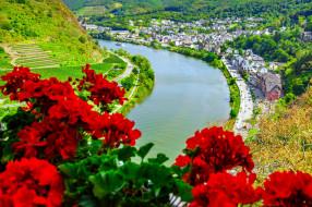 города, кохем , германия, река, панорама
