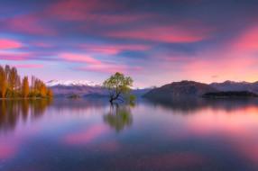 обои для рабочего стола 2048x1365 природа, пейзажи, горы, озеро, дерево, новая, зеландия, new, zealand, lake, wanaka, южные, альпы, southern, alps, уанака