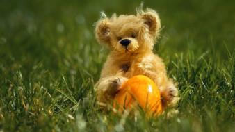 разное, игрушки, трава, медвежонок, игрушка