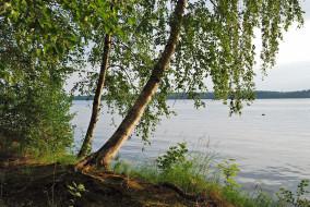 обои для рабочего стола 1920x1285 природа, реки, озера, широкая, река, береза