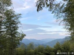 природа, лес, деревья, горы, небо