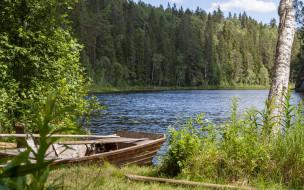 лес, лодка, река