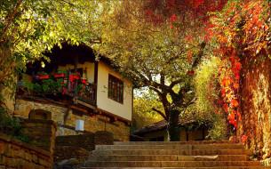города, - здания,  дома, осень, дом, ступени, house, fall, autumn