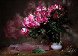 цветы, розы, букет, отражение, платок