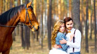 лошадь, влюбленные