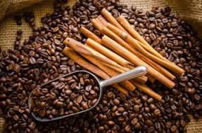 еда, кофе,  кофейные зёрна, корица, зёрна