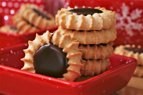 еда, пирожные,  кексы,  печенье, печенье, контейнер