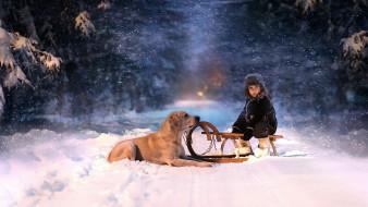 разное, настроения, мальчик, санки, собака, зима, снег, аллея