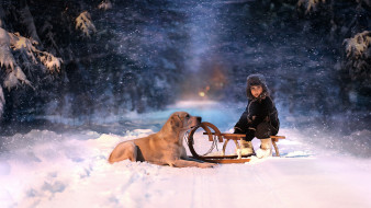 мальчик, санки, собака, зима, снег, аллея
