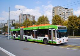 Троллейбус, город, Белград