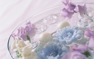 чаша, цветы, свечи