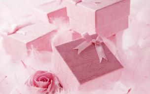 коробки, подарки, перья, роза