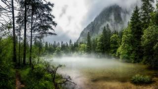 природа, горы, зеленые, деревья, туман, озеро, кусты, белые, облака, небо
