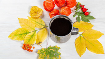 еда, кофе,  кофейные зёрна, физалис, шиповник, листья, осень