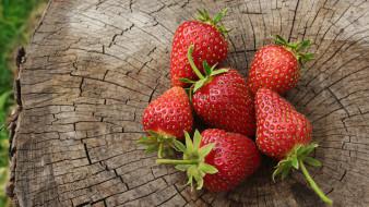 еда, клубника,  земляника, пень, ягоды, спелые