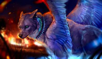 фэнтези, существа, волк, перо, ошейник, крылья, огонь