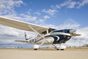 авиация, лёгкие одномоторные самолёты, легкий, моторный, взлетная, полоса