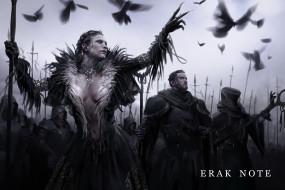 фэнтези, маги,  волшебники, войско, птицы