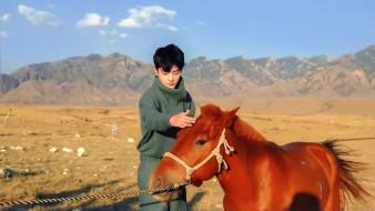 свитер, степь, лошадь, горы