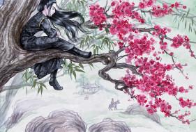 рисованное, кино,  мультфильмы, сюэ, ян, дерево