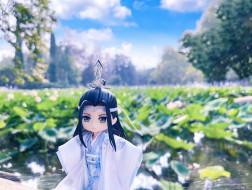 Лань Ванцзи, кукла, озеро, лотосы