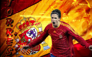 спорт, футбол, фернандо, торрес, флаг, эмоции, футболист